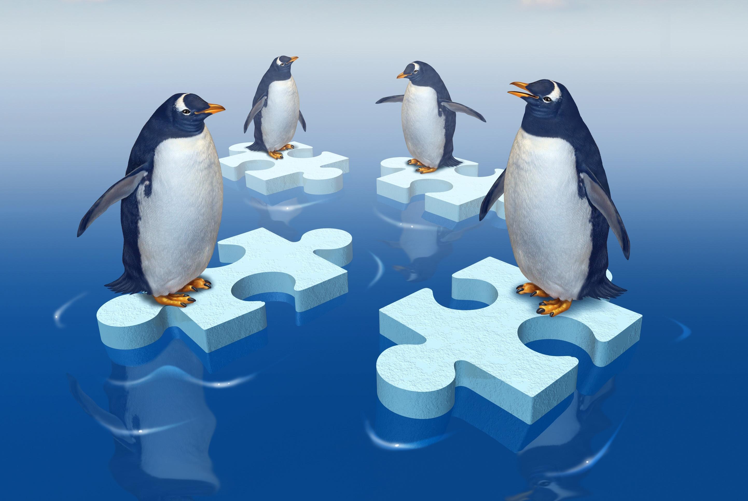 vier pinguïns